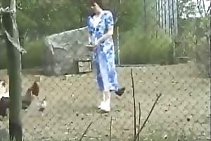 zoo video